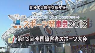 スポーツ祭東京2013(大会)(和歌山県選手団の活躍)