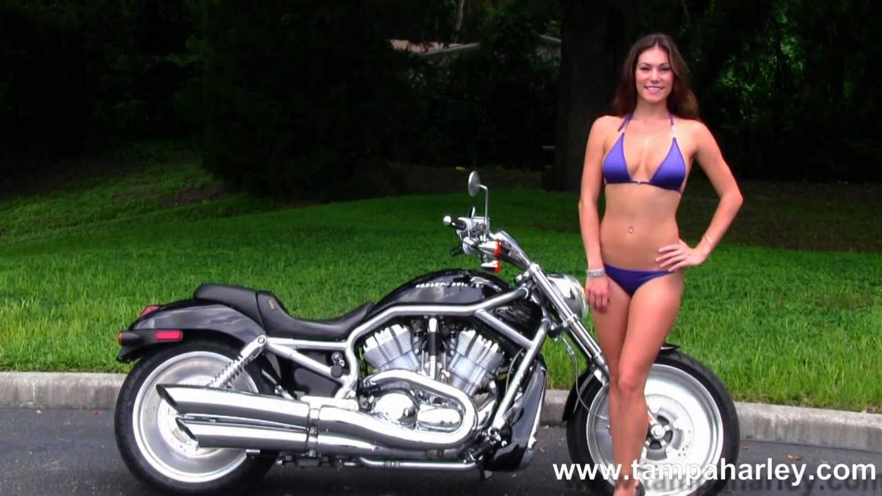 Hot Harley Davidsons For Sale