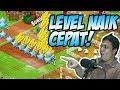 Mau Level XP Hay Day Cepat Naik INI CARANYA Hayday Indonesia