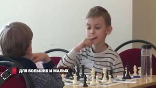 Для больших и малых: во Владивостоке стартовали крупные шахматные соревнования
