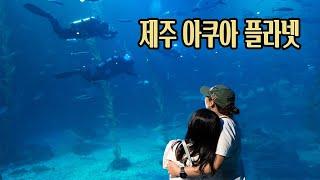 제주 아쿠아 플라넷 / 오션 아레나 공연 / 신화역사공원 / 제주 브이로그