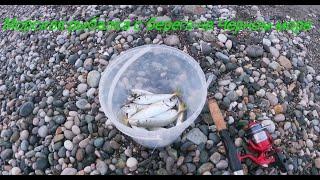 Морская рыбалка с берега на Чёрном море