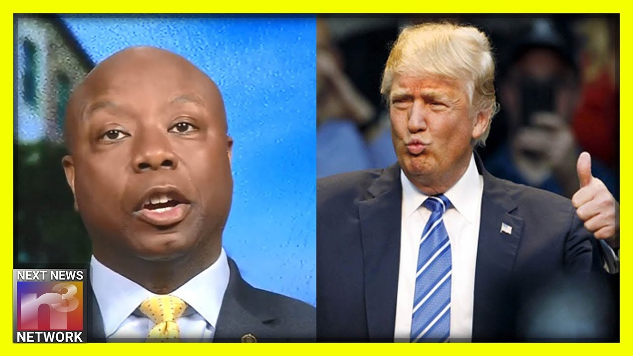 Black Senator Tim Scott SHUTS DOWN Anti-Trump Media Reporter With ONE HUGE List Of Good Reasons