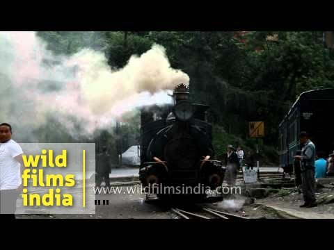 Steam train of Darjeeling comes chugging into station