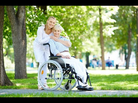 اليوم العالمي للتوعية بشأن إساءة معاملة المسنين  - نشر قبل 3 ساعة