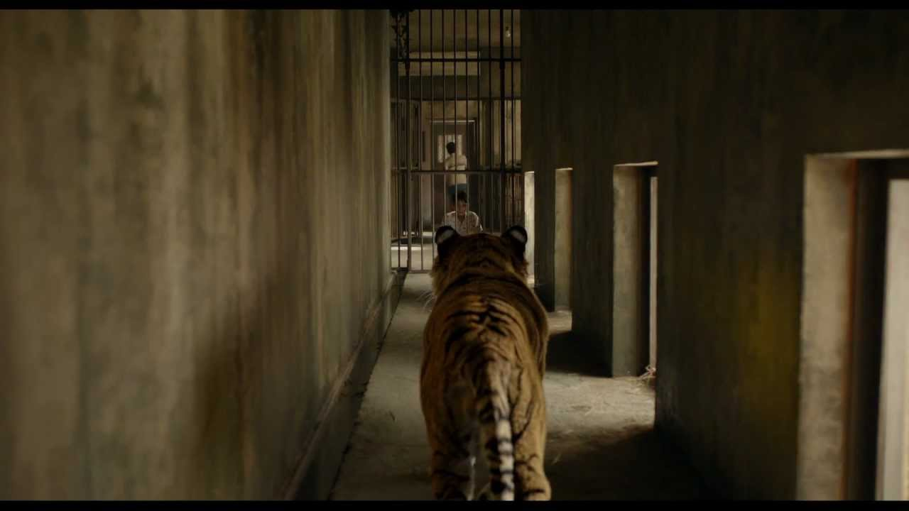 Life of pi clip meet the tiger in cinemas 29 november for Life of pi pool scene
