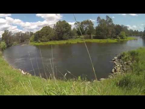 Sight Fishing The Goulburn River