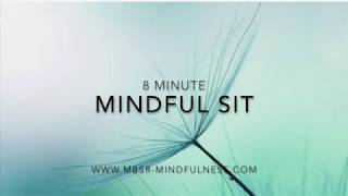 8 Minute Mindful Sit. Awareness of breath, body and thoughts.