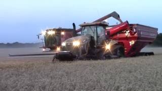 Wheat Harvest 2016:  Cutting Wheat on the Longest Day of the Year