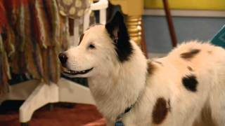 Avery B. Jealous - Clip - Dog With A Blog - Disney Channel Official