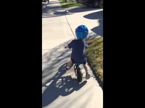 Biking buddy balance bike