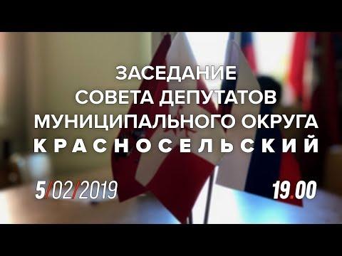 Заседание СД МО Красносельский 5 февраля 2019 года