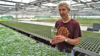 Visit at DENNERLE - the largest European supplier of aquatic plants