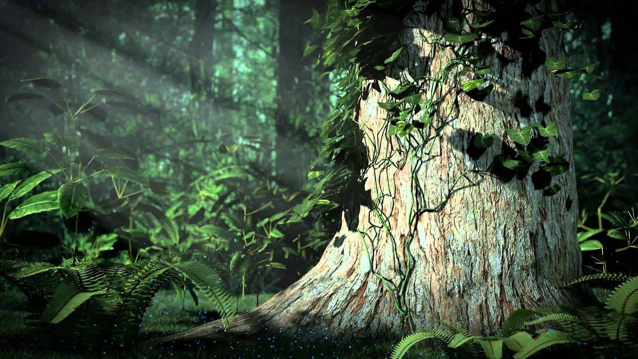 Cgi Forest Scene Youtube
