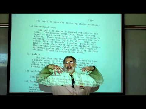 ANIMAL KINGDOM; PART 2 (the VERTEBRATES) by Professor Fink.wmv