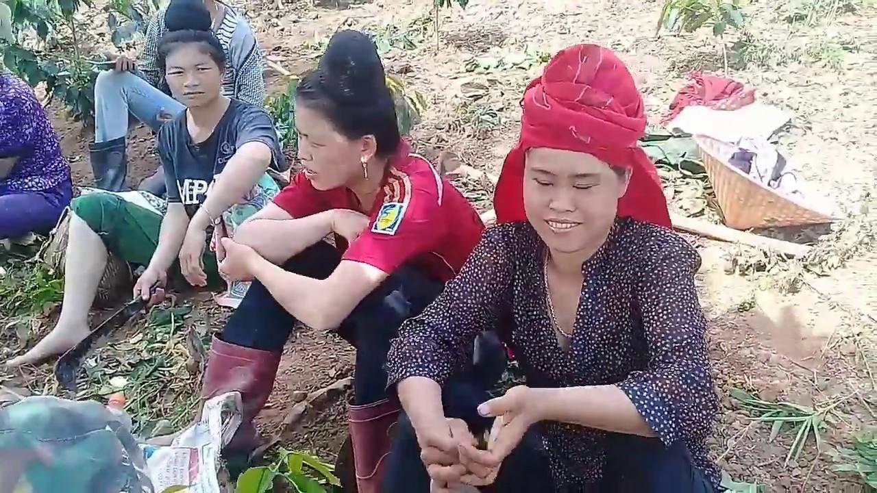 Các Cô Gái Thái Xinh Đẹp Trên Tik Tok P5 | DT Thái VN
