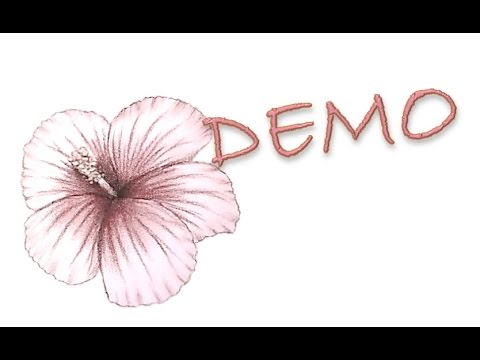 D monstration n 3 dessiner un hibiscus youtube - Comment entretenir un hibiscus ...