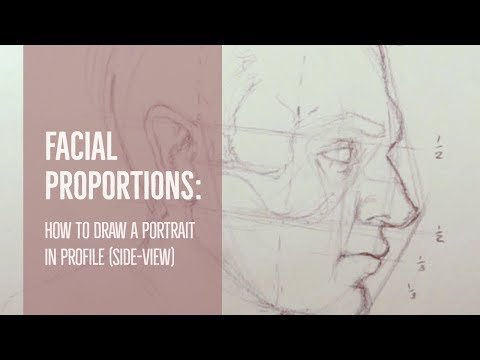 facial-proportions:-how-to-draw-a-portrait-in-profile-(side-view)