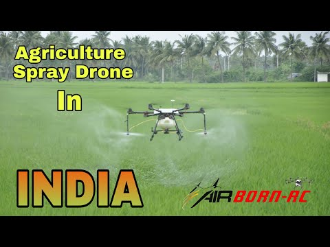 Agriculture Drone | DJI | Spraying On Paddy Field | Andhrapradesh | INDIA | AirbornRc