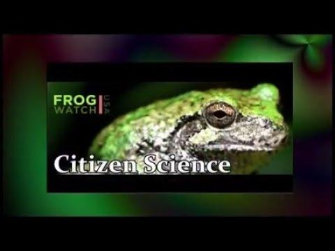 Baixar FrogWatchUSA - Download FrogWatchUSA | DL Músicas