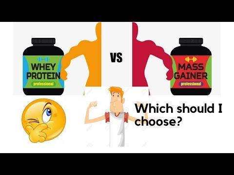 क्या-अंतर-है-whey-protein-और-mass-gainer-में-?-difference-between-whey-protein-and-mass-gainer?