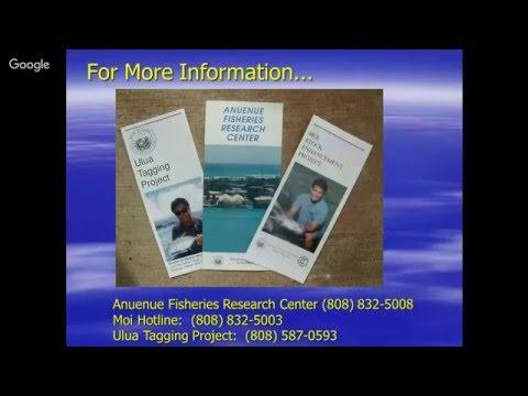 Sundays at the Bay - Fishing in Hawaiʻi - Outreach Talk #1