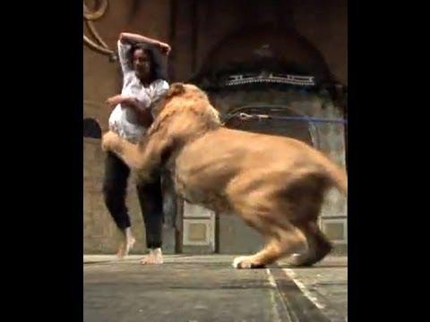 Shocking: Lion Attacks on Indian Woman