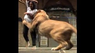 Shocking: Lion Attacks on Indian Woman