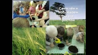 Экологическое воспитание в старшей группе 2014-15
