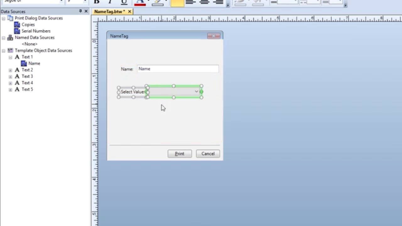 Data Entry Forms in BarTender Software: Designing a Data Entry Form  (Tutorial)