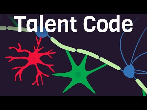How Talent is Created - The Talent Code by Dan Coyle
