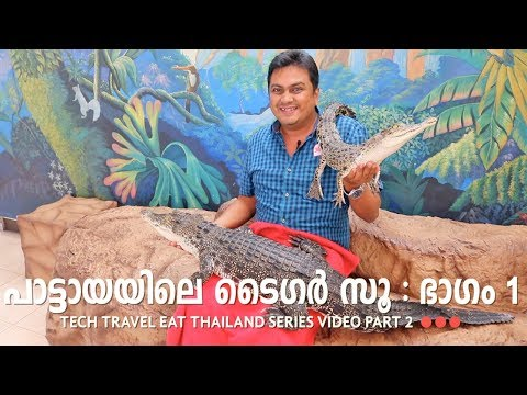 Sriracha Tiger Zoo Part 1 - Pattaya - Tech Travel Eat Thailand Malayalam Video Part 2
