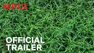 in-the-tall-grass-trailer-netflix