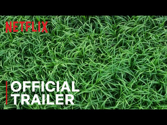 In the Tall Grass | Official Trailer | Netflix