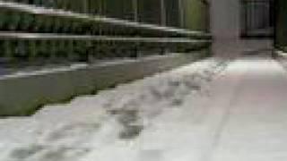 Feb.9.2008 music:Moon [FreeTEMPO] あっという間に積もってました。