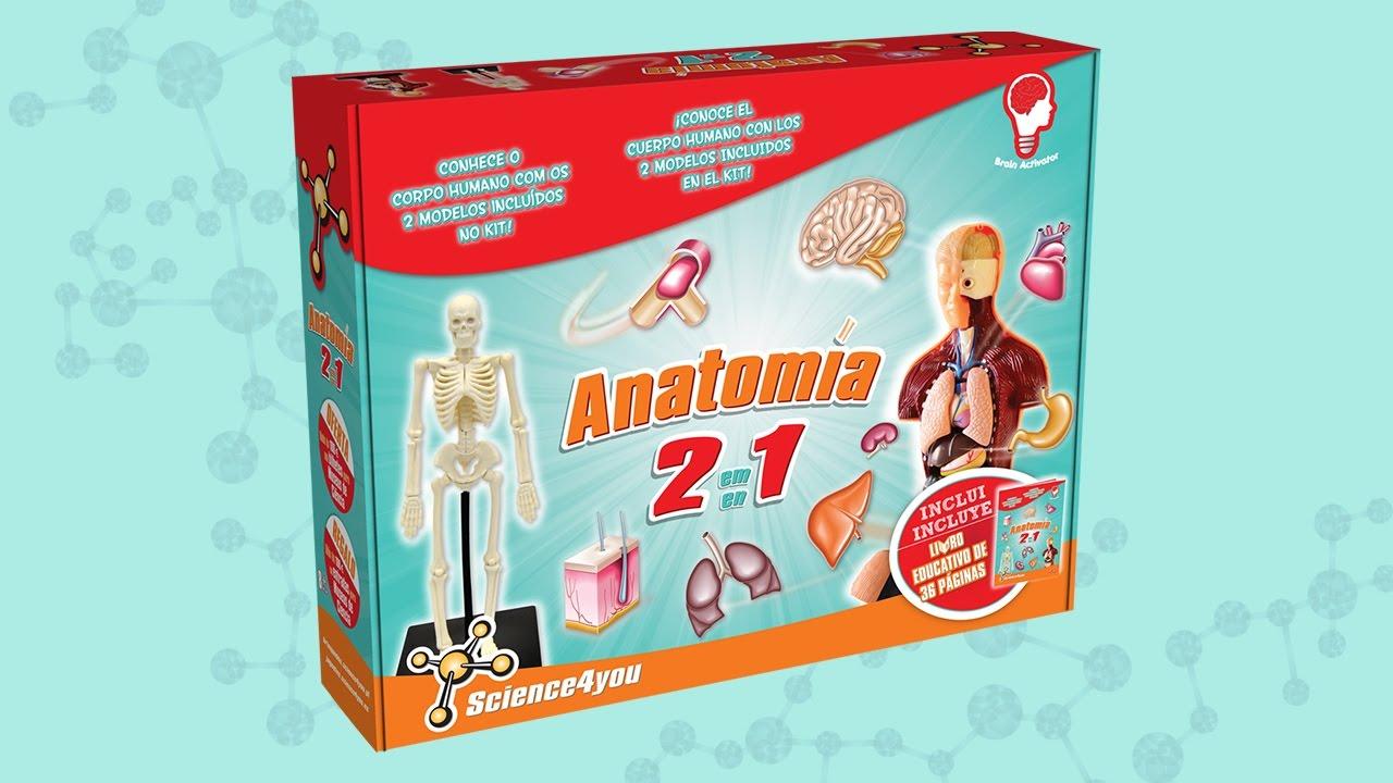 Science4you ES - Anatomía 2 en 1 - YouTube