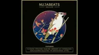 Nujabeats Deluxe - Nujabes album tribute (free download)