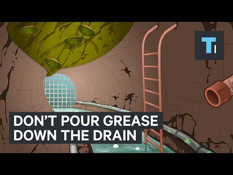 Thumbnail: Why you should never pour grease down the drain