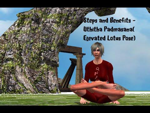 uthitha padmasana steps and benefits elevated lotus pose