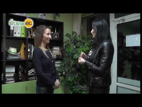 Бояна Димитрова получи златно кюлче от фирма Косад Семанс