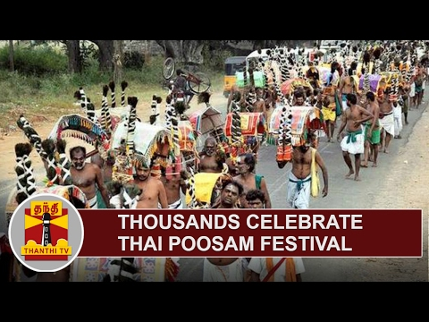 Thousands of Devotees celebrate Thai Poosam Festival at Palani and Thiruchendur Murugan Temple