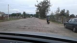 Дорога на Біле озеро (Рівненська область)