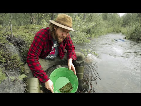 Gold prospecting in Lapland with a Geologist