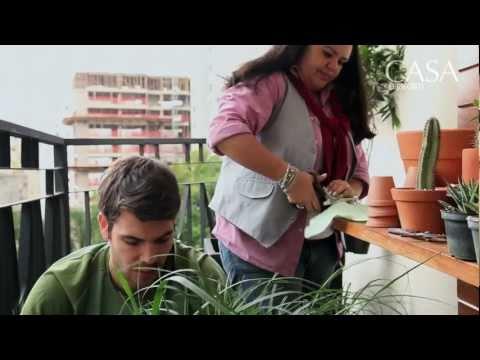 Transformação: varanda pequena - jardim