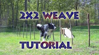 Agility Training Tutorial - Weave Poles (2X2 Poles Method)