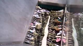 JWCE Waste Grinder Demo