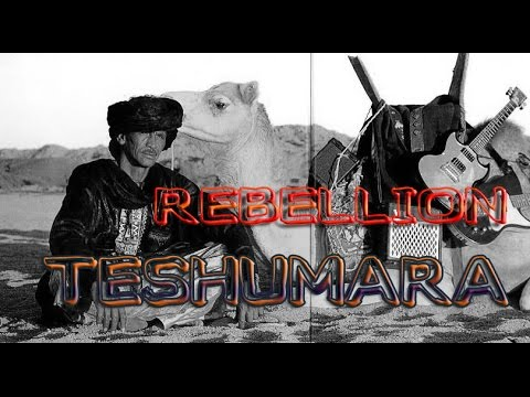 Documentaire: Teshumara (Tinariwen) - les guitares de la rébellion Touareg version Française