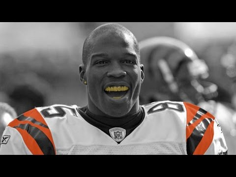 Chad Johnson Highlights