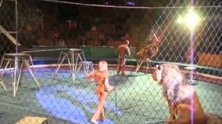 Трагедия в Львовском цирке...