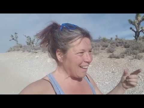 Geocaching Nevada, Hiking, Wild Horses &  Why I Don't Hand Out Fish!